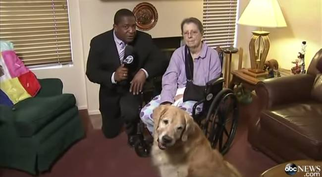 """44.) This woman whose life was saved by her <a href=""""http://www.viralnova.com/dogs-save-owner/"""" target=""""_blank"""">incredible golden retrievers</a>."""