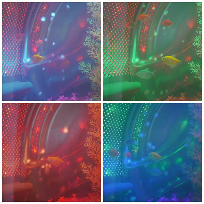 Here you can see the range of colors that the LED lights show, giving the inside of the fish tank an awesome look.