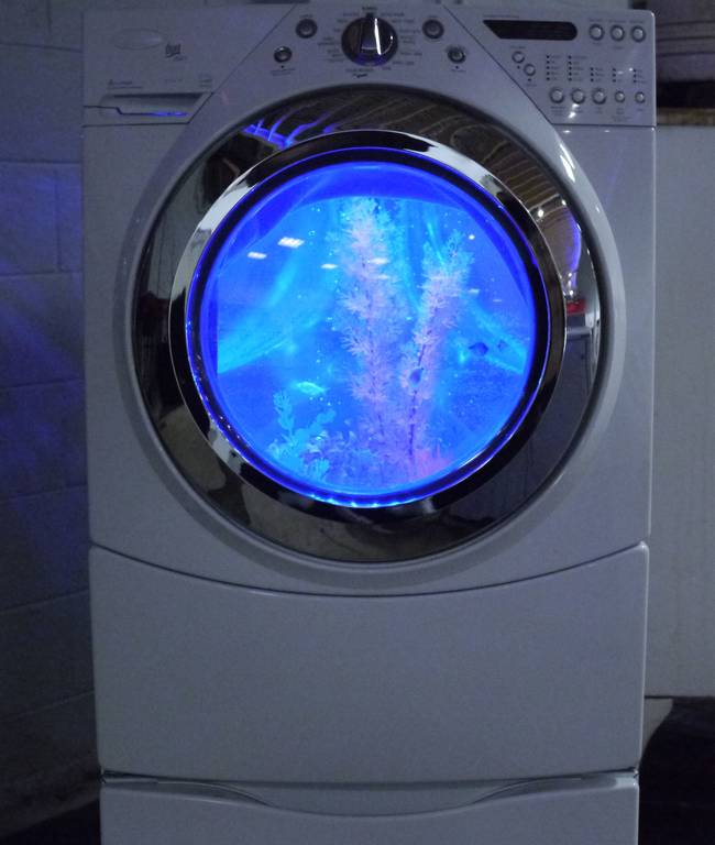 And here's the final product: a regular washing machine on the outside, and an awesome fish tank on the inside.