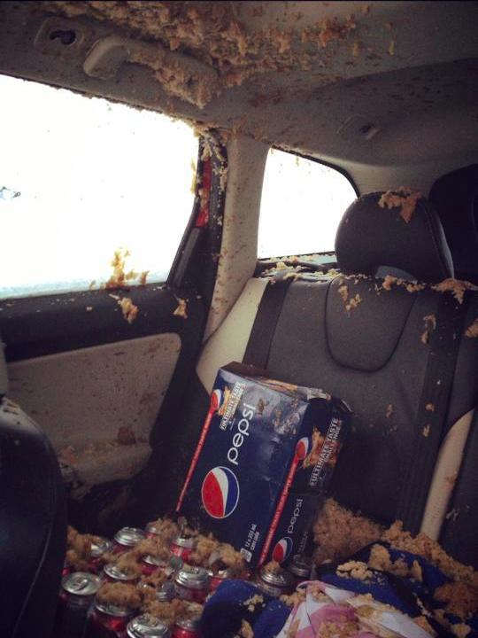 When Pepsi got left in a freezing car and launched an all-out assault on upholstery.