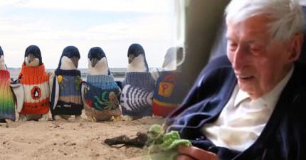 高齡109歲的爺爺正在用他編織的小毛衣拯救32,000隻企鵝的性命!