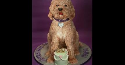 這隻狗狗好可愛!等等...你說這隻狗可以吃?!
