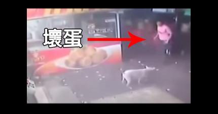 監視器拍到這名男子想要踢一隻無辜的狗兒。他在幾秒後就學到了慘痛的教訓。