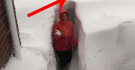 只是聽說美國下大雪沒什麼感覺,但看了這22張照片之後才知道簡直太瘋狂了!
