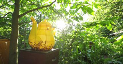 這個美麗的巨大金色茶壺居然是由6萬隻蜜蜂合力打造出來的!?