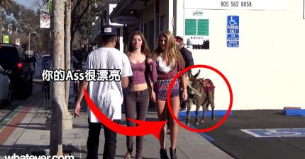 這男生走近經過地女生然後說「你的屁股很漂亮」,然後去摸她們後面的屁股。