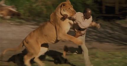 史上拍攝最容易有生命危險的野生電影,劇組人員都被現場150多隻野獸弄得傷痕累累!