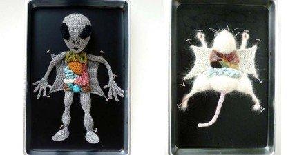 如果解剖動物會讓你挫到不行,你應該上一上這位藝術家最可愛的解剖課。