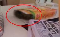 這名男子回家的時候拿起玉米麥片盒子的時候發現有點沉,當往裡面看的時夠差點昏過去!