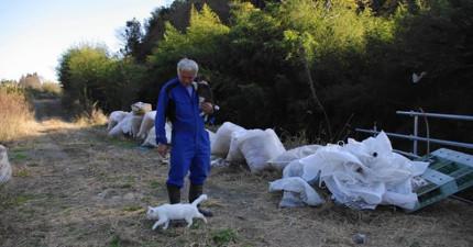 核災後福島人去樓空,但這位「福島最後的男人」卻硬是留下照顧那裏無家可歸的流浪動物。