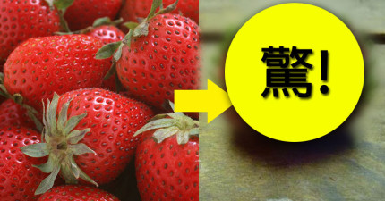 人人都愛吃草莓,但等到它發芽後就會變成你最恐懼的夢魘...