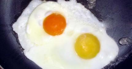 如果學會這招之後,你只要1秒鐘就能分辨出蛋的品質好壞!