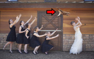 這30個新娘拋的不是「捧花」而是「貓咪」!我今天已經不能再看更多的網路怪圖了...