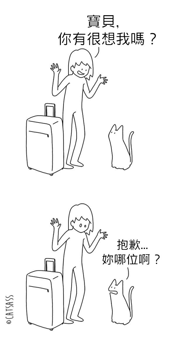 10張漫畫完美呈現貓咪最白目又邪惡的心聲。