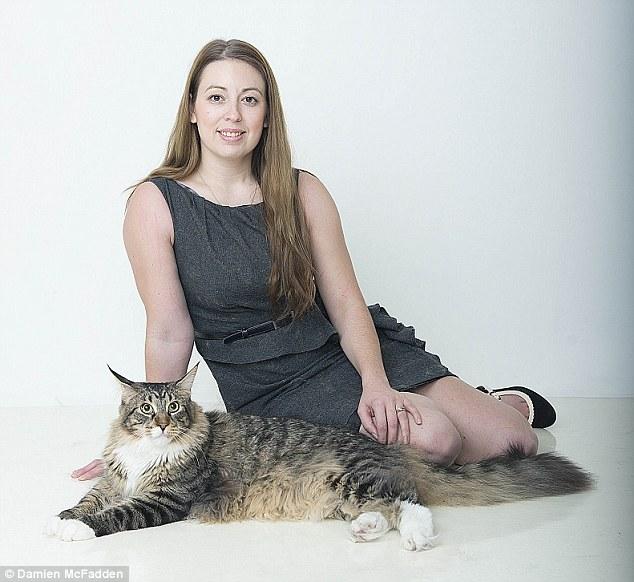 看過這隻114公分長堪稱全世界最大的貓咪,會讓你有把整個人埋進去的衝動...