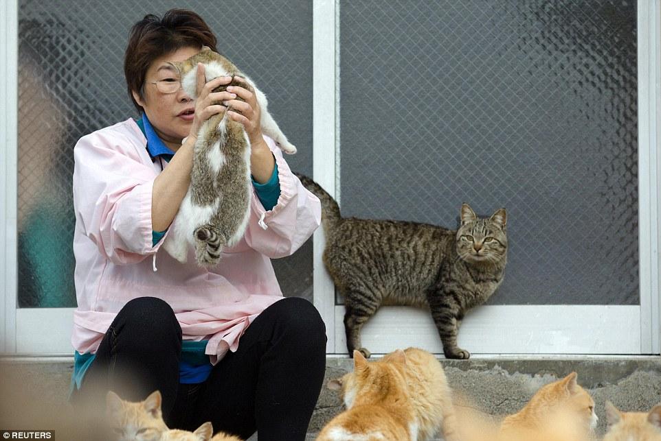 不過當地的居民也不全是那麼喜歡貓咪的,有些也會將「入侵」他們家中的貓咪趕走。此外,居民也試著要妥善控制貓咪的數量,現在至少有10隻貓咪已經被結紮了。