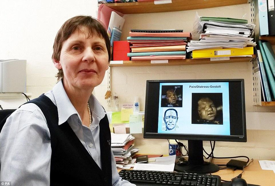 4D超音波實驗揭露:這就是為什麼媽媽絕不能在懷孕時抽菸!