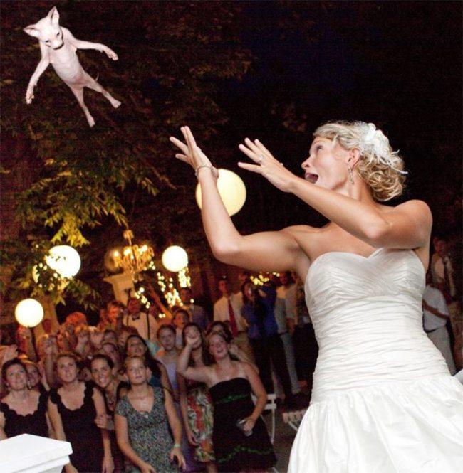 這張看起來比較像新娘在發動超能力...