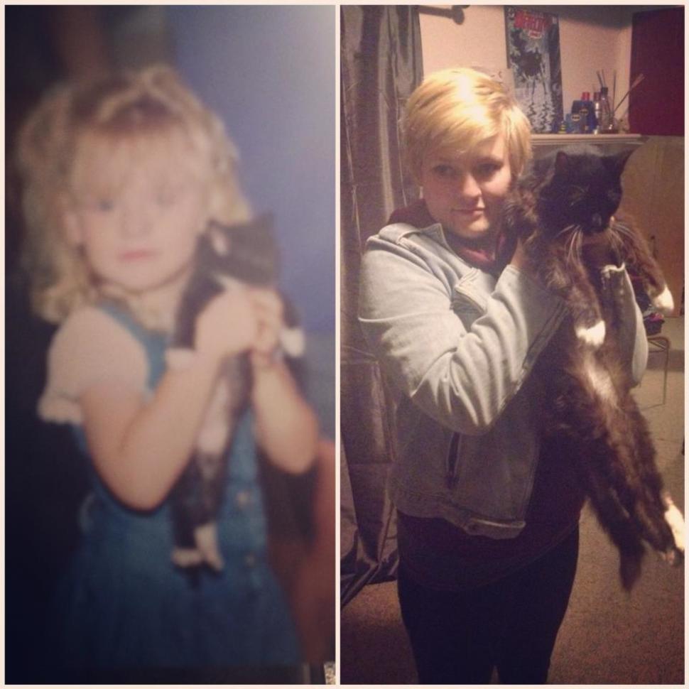居然過了19年!好長壽的貓咪!