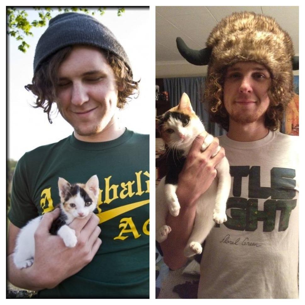 小貓咪長大還是很萌!