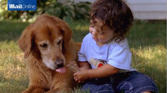 研究顯示:這就是為什麼你該給你的狗狗瘋狂地親一親。