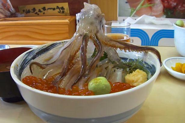 這隻在海鮮丼上的烏賊確實死了,但只要加一點醬油在上面...
