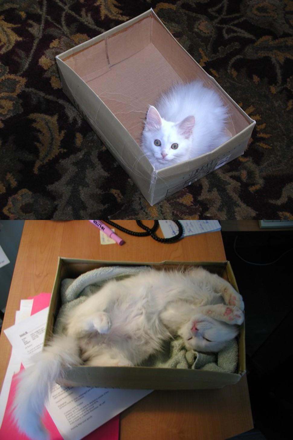 不知不覺就把盒子給塞滿了!