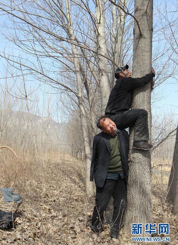 這兩位超級爆紅的「種樹老人」一人全盲一人沒雙臂,他們持續10多年的感人義行完全讓人佩服得五體投地...
