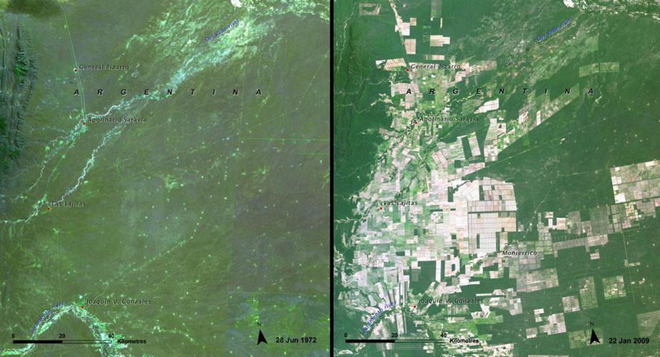 6. 阿根廷的雨林地,因為農業的開墾而慢慢被吞噬。