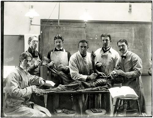 12張百年前醫科訓練解剖人體的照片,絕對是我幾年來所見過最詭異的畫面...