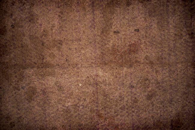 6. 地毯是廁所的4000倍髒。