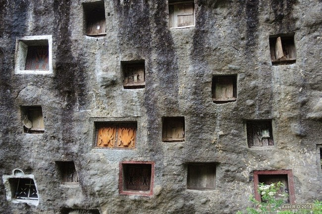 When a member of the Toraja people dies, their bodies aren't buried into the ground. They are instead put into elaborate cave tombs dug into the mountain. Before this can happen, there is the Rambu Soloq, a series of funeral ceremonies that lasts for several days.