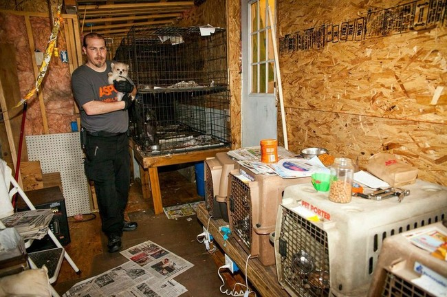 Dogs who were previously purchased from the facility were reported to be in severely poor health after being brought into their new homes.