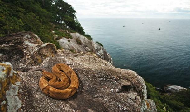 25個最荒謬詭異的島嶼,只有冒險指數爆表的人才敢去!