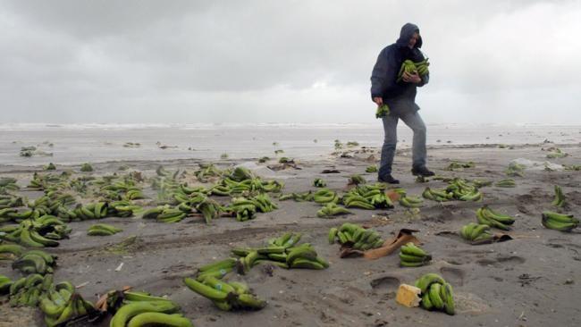 10個曾被沖上岸的詭異東西。#3會讓你下次去海邊前會先猶豫一下!