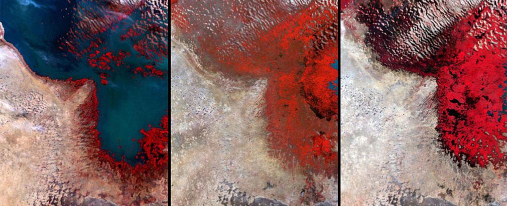 8. 非洲查德湖 (Lake Chad),在1960年代,它還是全世界第6大的湖泊,卻在2002年縮水至只有它原來12分之1的大小,湖泊慢慢消退變成紅色的沼澤。