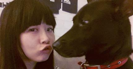 這名女網友被意圖不軌的歹徒團團包圍,驚險之際這隻流浪狗大黑衝出來救了她一命!