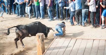這名男子參加西班牙奔牛節,卻被狂奔的牛角直接命中兩腿之間...!