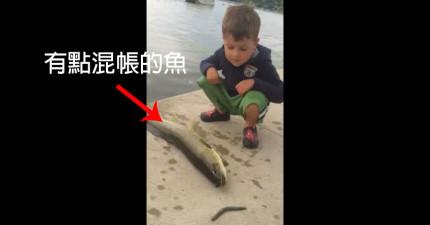 這個小男孩和魚的故事會教會你,永遠不要相信一個你不認識的魚。