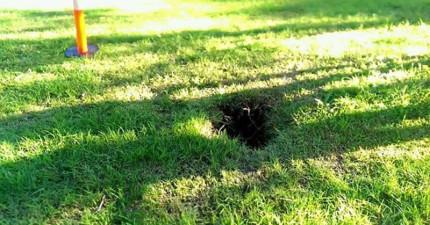 一名男子發現了這個草地上的大洞...你怎麼會躲在這裡面啊老兄!?