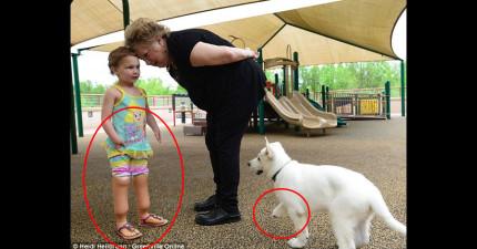 爸媽本來擔心天生手腳有缺陷的女兒會自卑,直到這隻跟她一樣的小白狗出現在她的生命中。