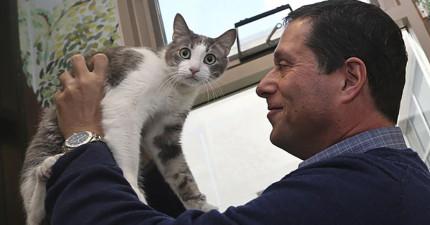 學者終於解開貓咪的行為所代表的意思和情緒了!原來貓咪的16種喵聲有不同的意思啊!