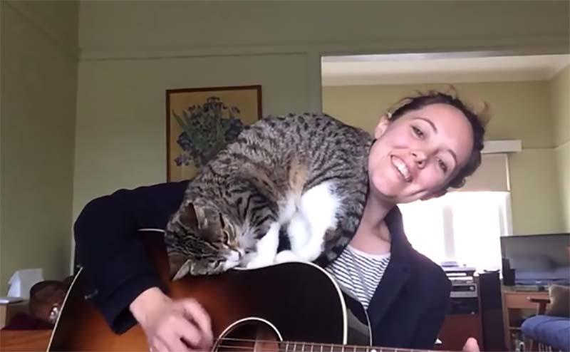 這個美聲女孩只不過想錄首歌,但她的貓咪可沒想讓她稱心如意!
