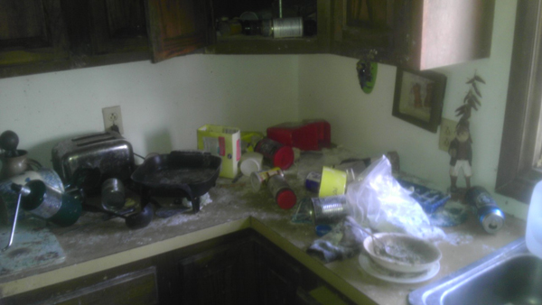 Cupboards and shelves were emptied out by the hungry little critters.