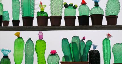 這名藝術家把沒有人要的寶特瓶變成這些永遠都不用澆花的超酷仙人掌。
