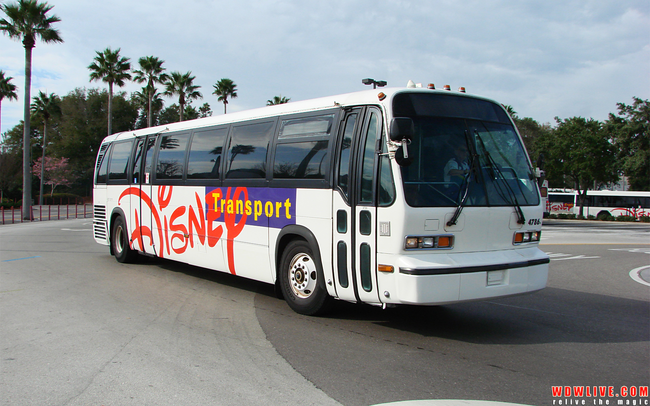 The Disney Bus Transportation system is the 3rd largest bus system in Florida.