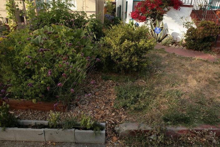 lawn-garden34-1