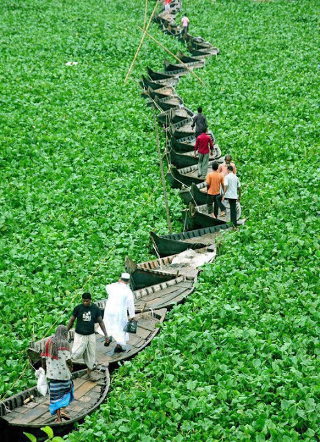 A bridge of boats.