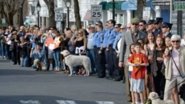 老警犬因為疾病纏身不久於世,安樂死之前人們決定隆重地列隊送他最後一程...!