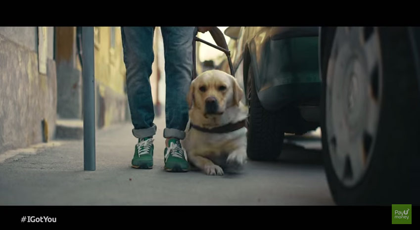 這名盲人在買咖啡的時候他的導盲犬忽然跑掉,但過了幾秒後我的笑容又出來了!